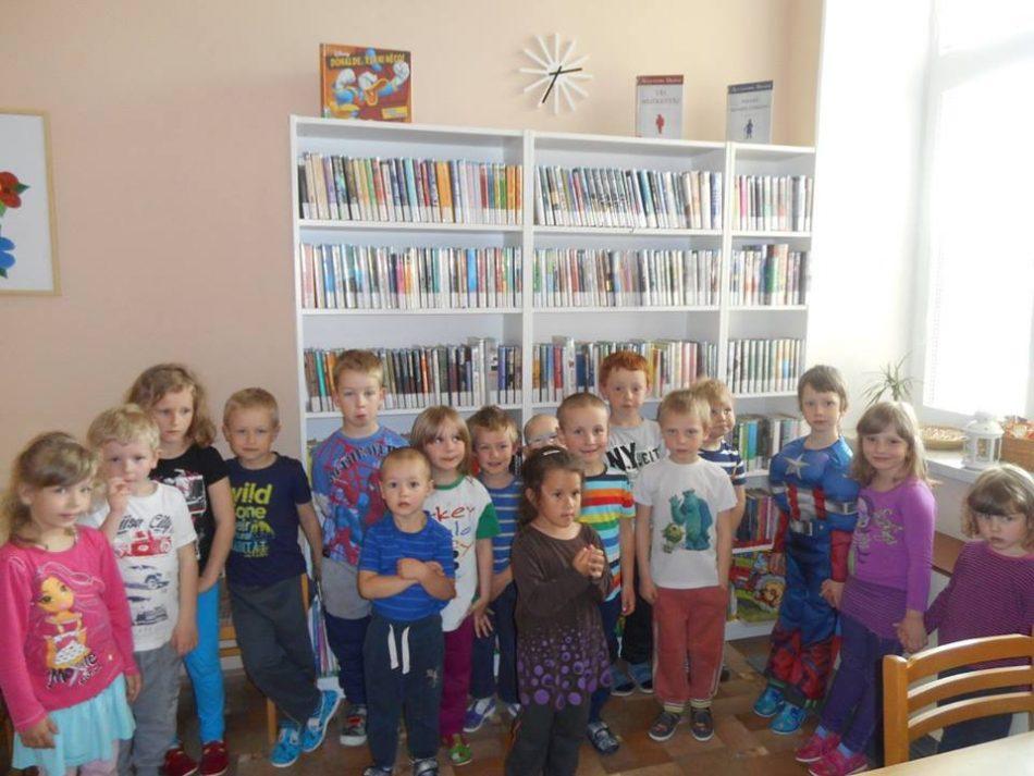 knihovna Volanice